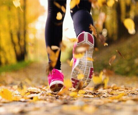 Waarom hardlopen in de herfst fijn is